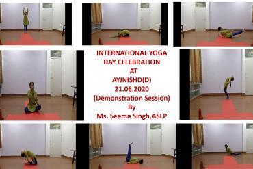 International Yoga Day Celebration on 21st June at AYJNISHD-Demonstration
